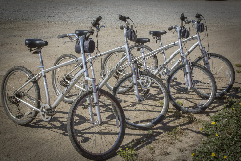 Four silver bicycles parked in a row.