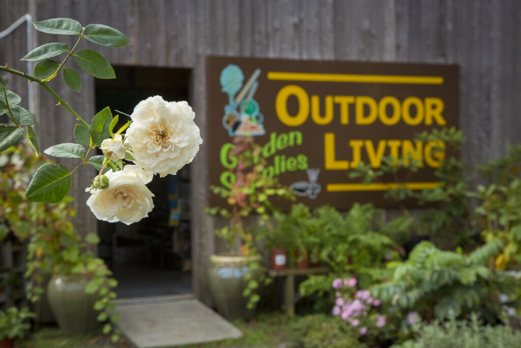 Two flowers and  a sign that reads Outdoor Living, Garden Supplies.