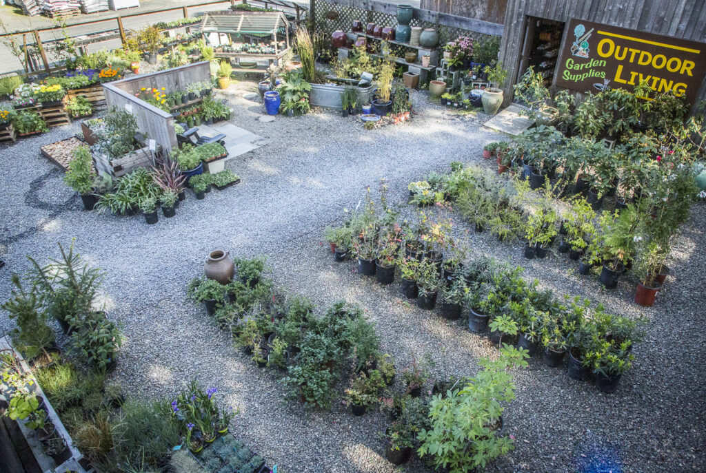 Aerial view of Outdoor Living yard with plants for sale.